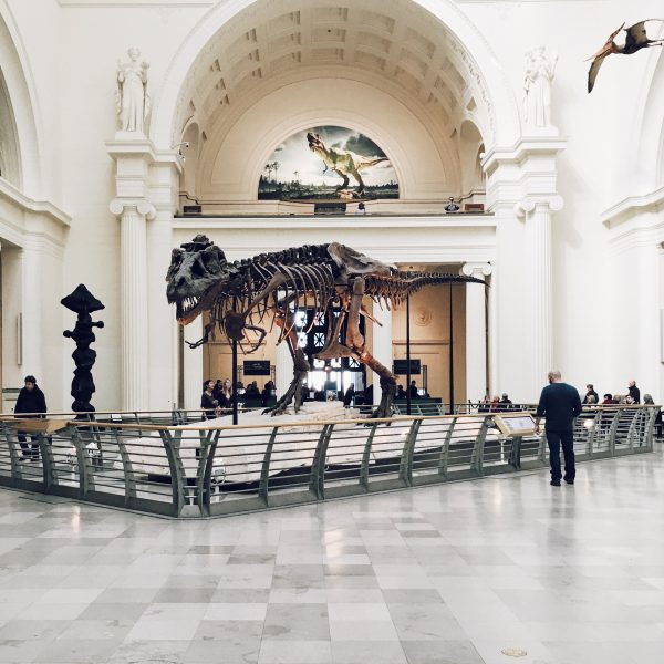 Arts, Culture, Landmark Preservation